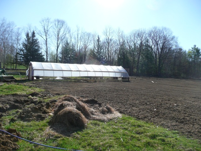 First Greenhouse is up