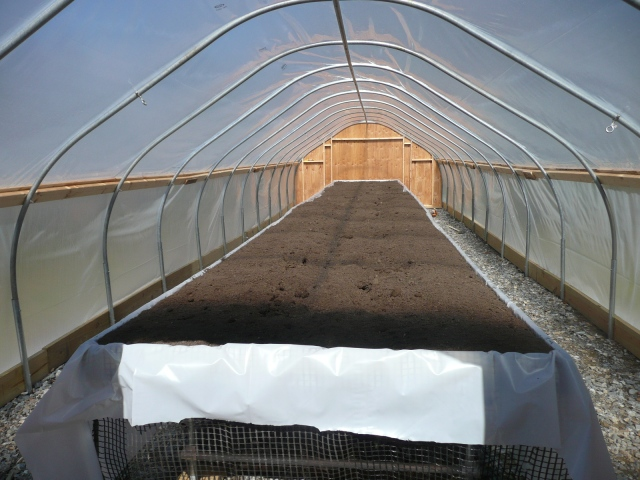 2nd Greenhouse Up